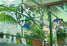 Casa Colonial Miriam Gomez Photos 7