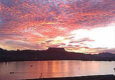 El Yunque Photos 8