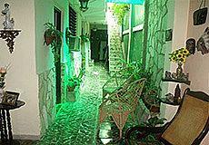 Casa Verde Photos 7