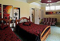 Girasol Hostel Photos 6