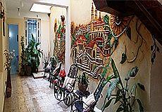 Girasol Hostel Photos 8